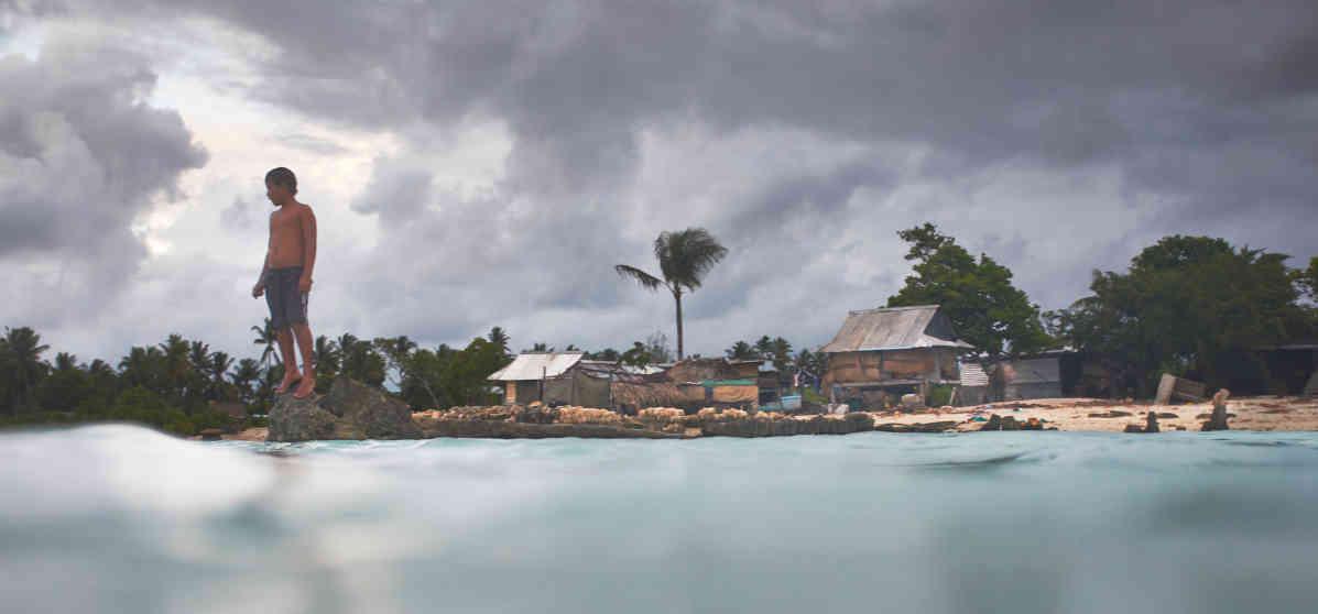 Bild Anote's Ark